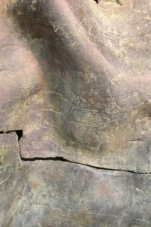 Moki-Brons-Detail1